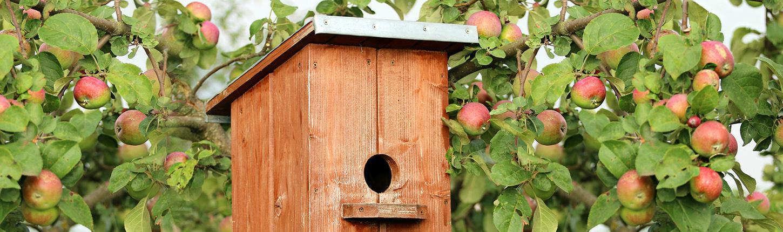 Anleitung Vogelhaus Nistkasten selber bauen